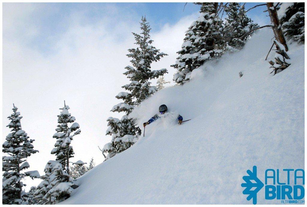 Joe Augusten, Alta Ski Area.
