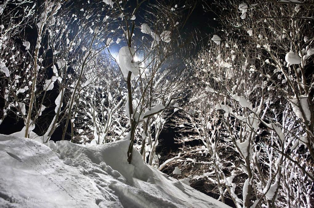 Night skiing, Niseko Grand Hirafu.