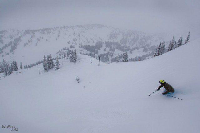 Marshal Olson, Alta Ski Area, Blister Gear Review