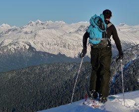 G3 Alpinist Skins