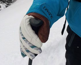 Dakine Annie Boulanger Team Targa Glove
