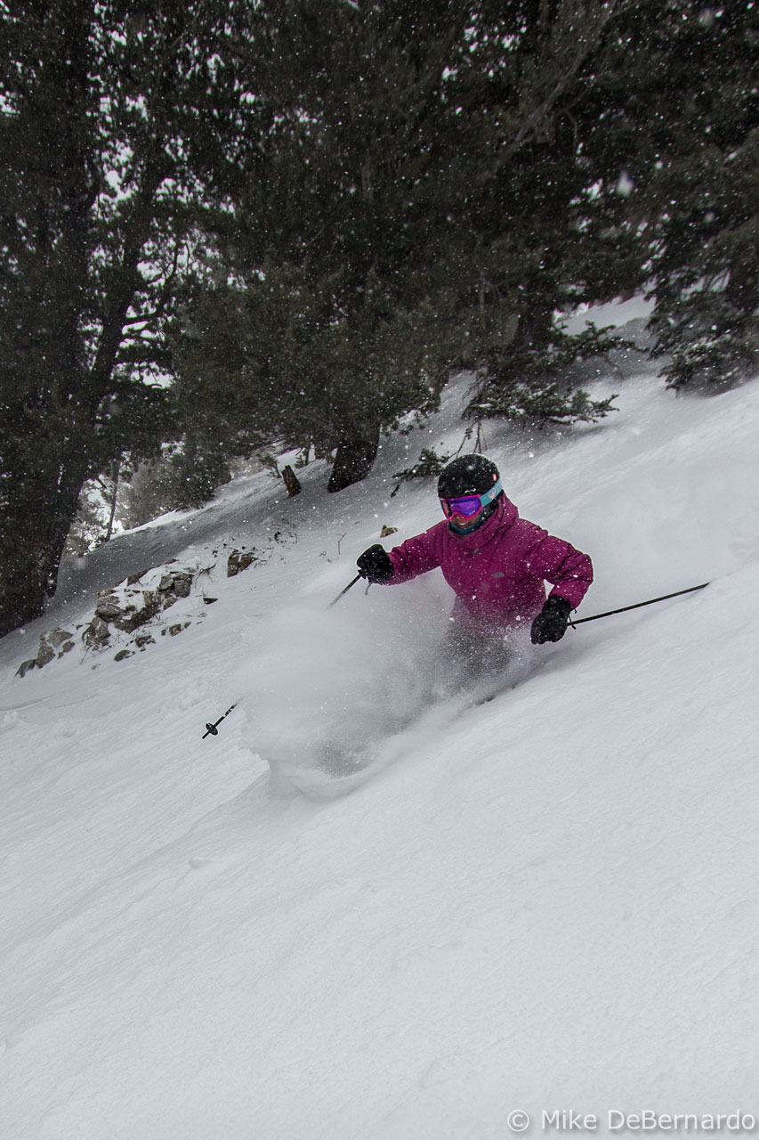 Icebreaker Ski Lite Over The Calf Sock, Blister Gear Review