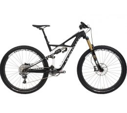 Specialized Enduro 29, recommended