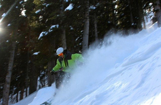Will Brown, Lorelei Trees, Taos Ski Valley.