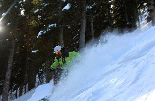 Will Brown, Lorelei Trees, Taos Ski Valley.