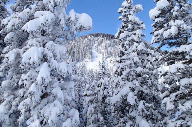 West Basin Ridge, Taos Ski Valley.