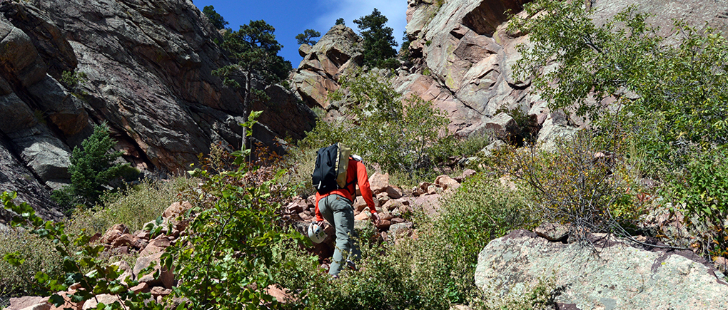 Dave Alie reviews the Metolius Crag Station, Blster Gear Review