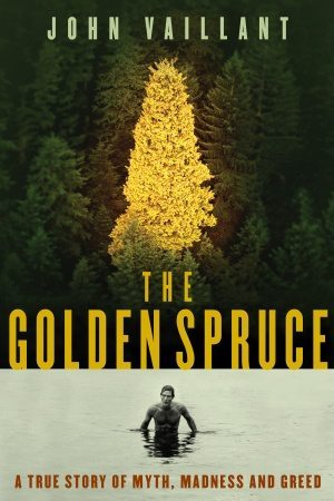 The Golden Spruce Stock