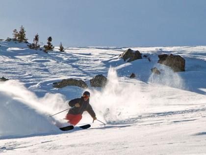 2015-2016 Romp Skis 106