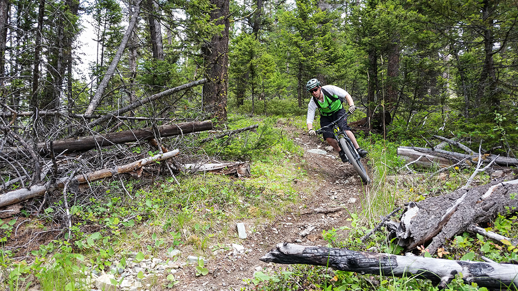 Noah Bodman reviews the Continental Trail King Tire for Blister Gear Review