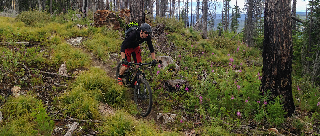 Noah Bodman reviews the 2015 Devinci Troy Carbon SX for Blister Gear Review