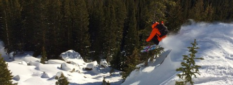 Alpha-Pro-Action-Skiing