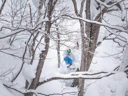 Deep Dive: Powder Ski Comparisons