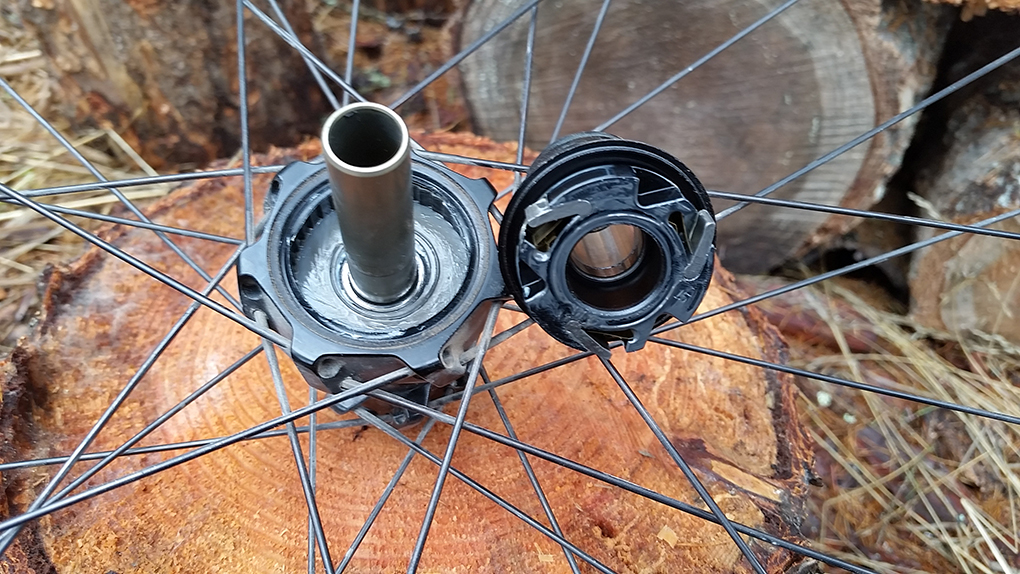 "Noah Bodman reviews the Vittoria Deamion 29"" wheelset for Blister Gear Review."