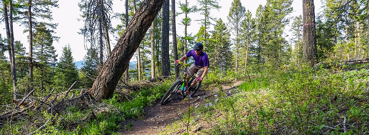 Noah Bodman on the Maxxis Minion DHF & DHRII WT tires, Whitefish, MT.