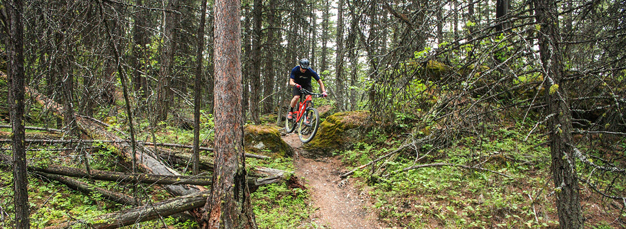 Noah Bodman reviews the Reynolds Enduro 29 Wheels for Blister Gear Review