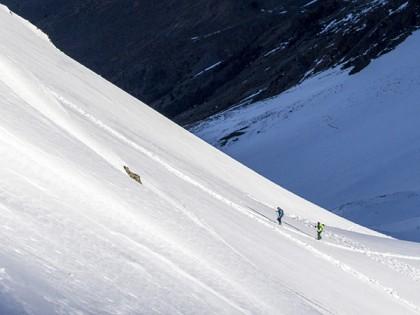 Deep Dive: Alpine Touring Binding Shootout