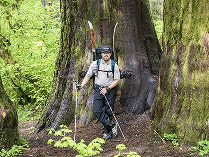 Backcountry Access Scepter Ski Pole
