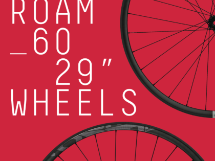 """Sram ROAM 60 29"""" Wheels"""