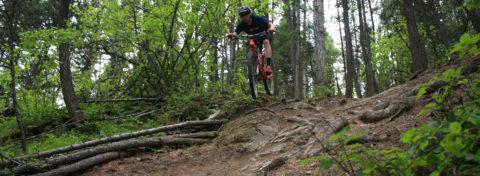 bike fit 2 slider