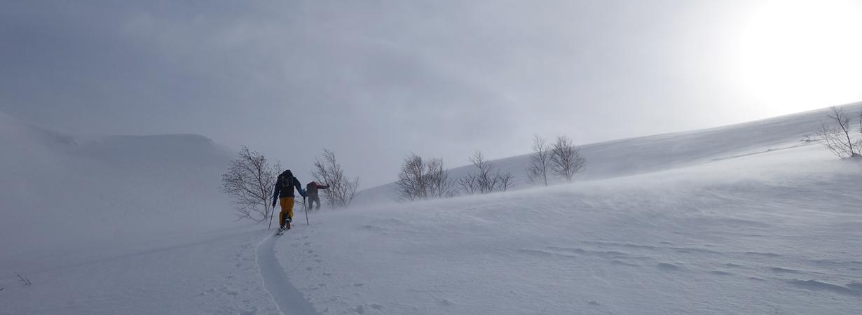 Sam Shaheen reviews the Blizzard Spur for Blister
