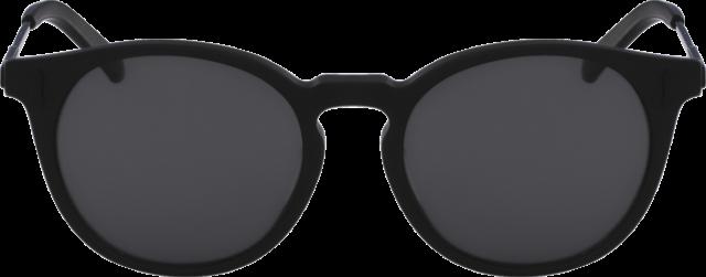 Blister's Sunglasses Roundup