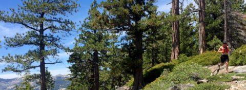 tahoe slider