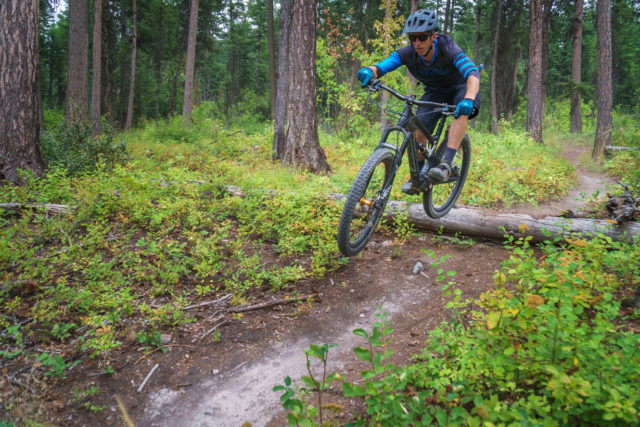 Noah Bodman reviews the Zerode Taniwha Trail for Blister