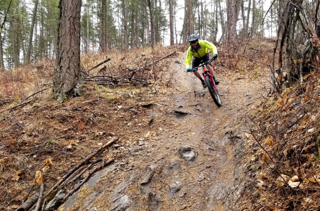 Noah Bodman reviews the WTB Vigilante 2.6 and Trail Boss 2.6 for Blister