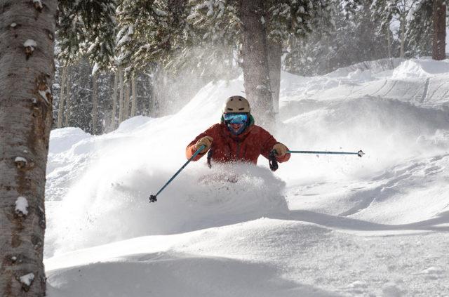 Blister's Ski Pole Roundup — 2019