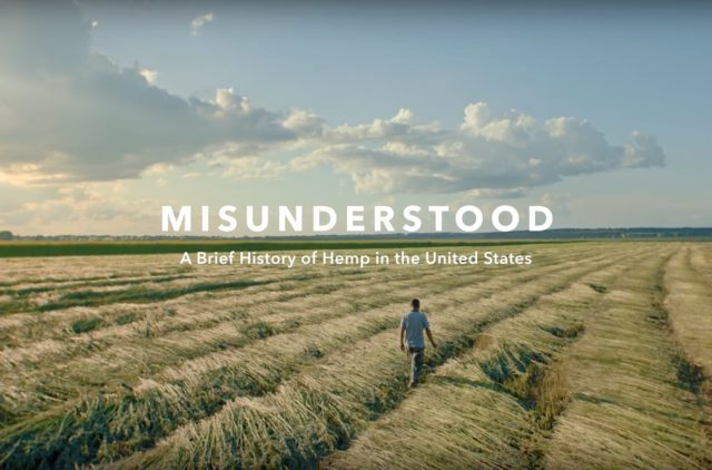 "Patagonia's video ""Misunderstood 