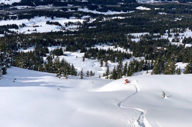 Blister's reviewers discuss where to save weight and where to cut weight in your backcountry ski setup