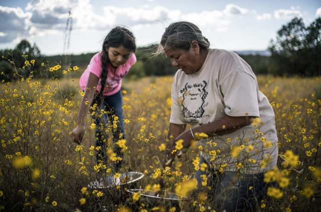 Food Sovereignty, Indigenous Rights, & the Film, Gather (Ep.131), BLISTER