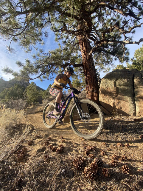 Blister's Women's Mountain Bike Jersey Roundup