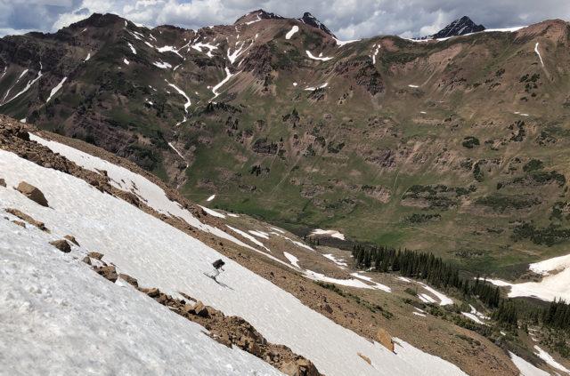 Luke Koppa reviews the Movement Alp Tracks 106 for Blister