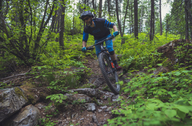 Noah Bodman reviews on the WTB Verdict & Judge and compares them to the Maxxis Minion DHF & DHRII for Blister
