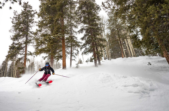 Blister Gear 101: How to think about ski length