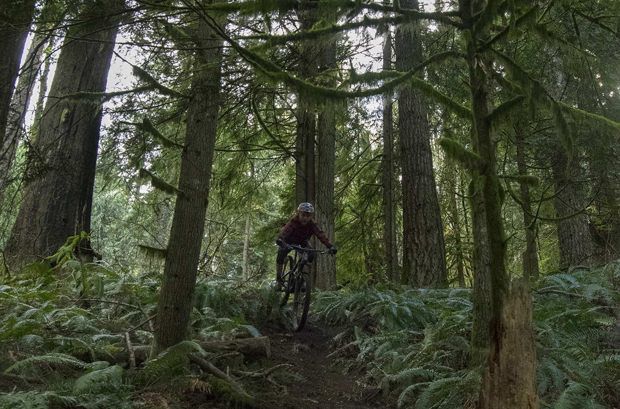 David Golay goes on Blister's Bikes & Big Ideas Podcast to discuss wet-weather mountain bike apparel, compares the RockShox ZEB, Fox 38, and Manitou Mezzer Pro forks, and more