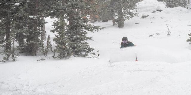 Luke Koppa reviews the Season Forma ski for Blister