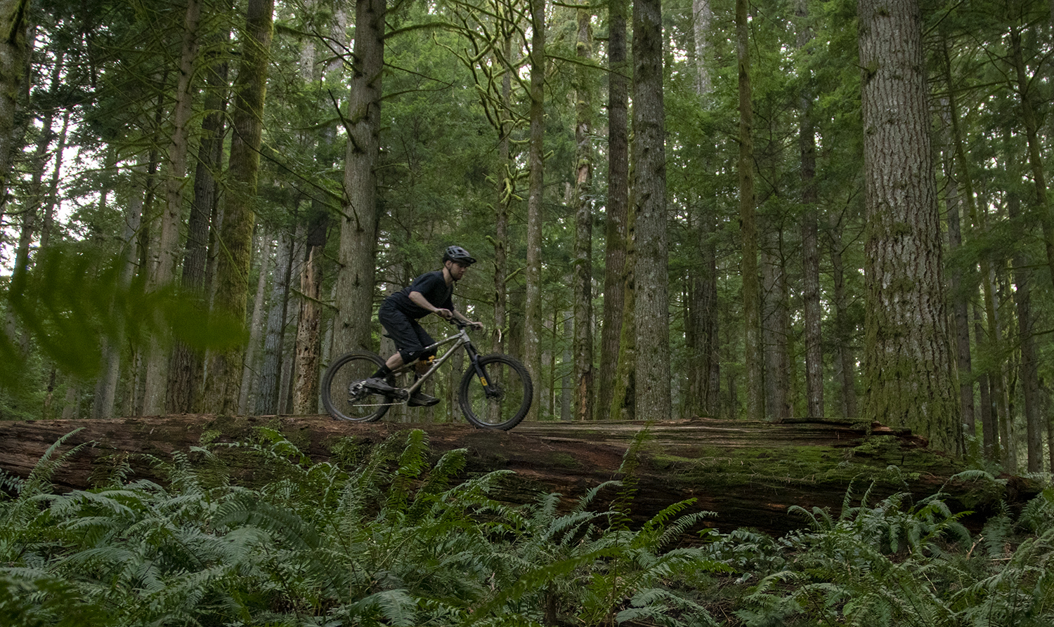 David Golay reviews the Ohlins RXF36 m.2 for Blister