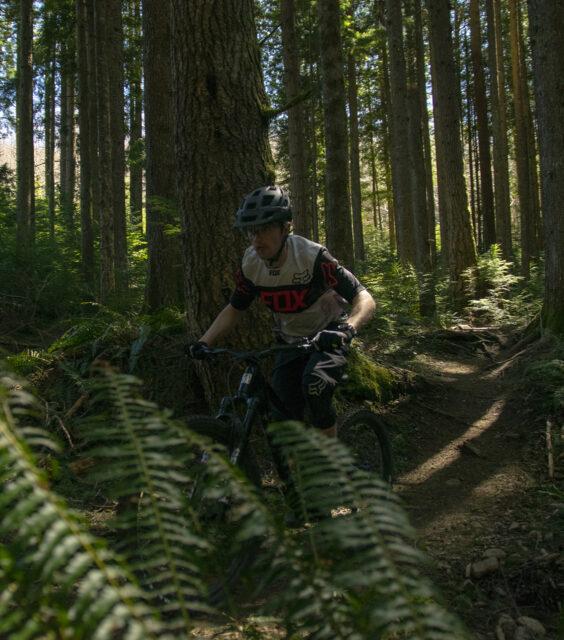 2021 Marin Alpine Trail, BLISTER