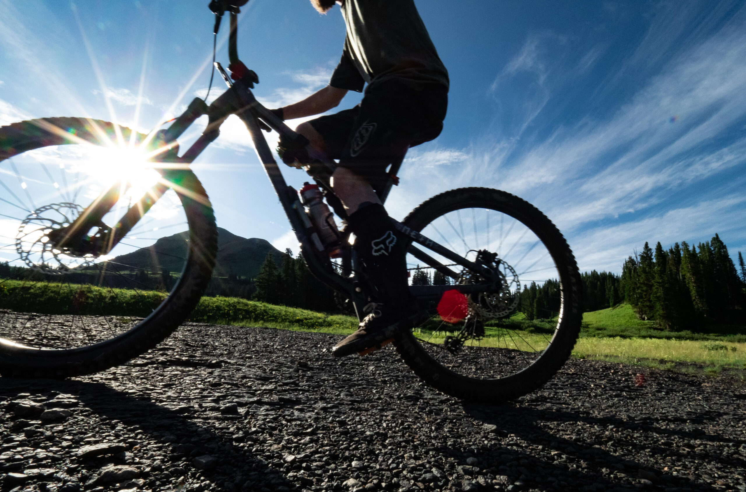 Blister Guide to Mountain Bike Tires