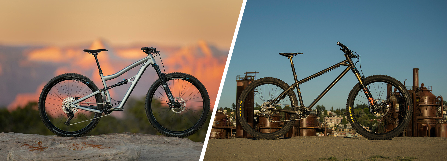 Blister Would You Rather: Hardtail vs. Full Suspension