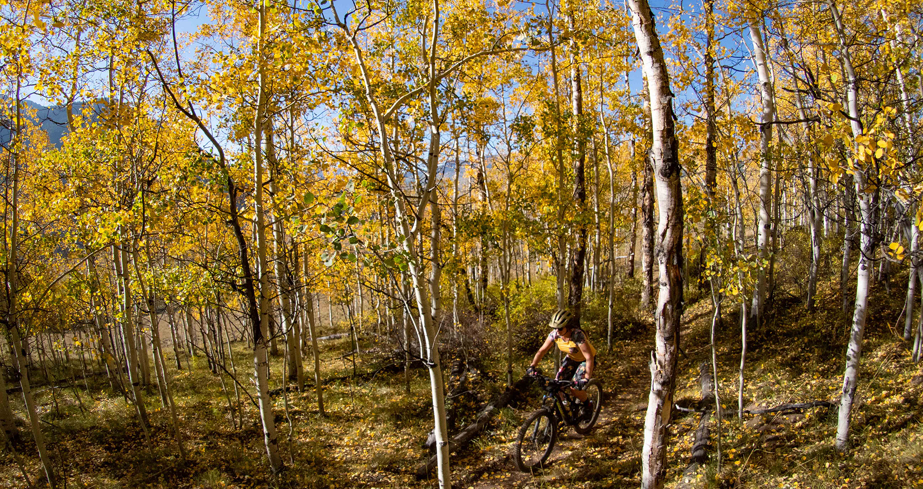 Visit Blister Headquarters at Elevation Hotel in Crested Butte