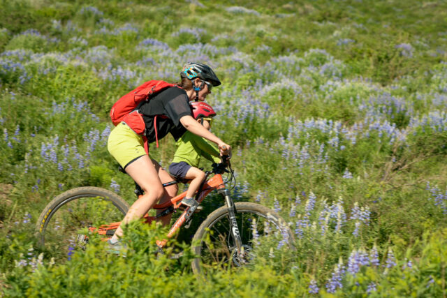 Blister Review Crested Butte